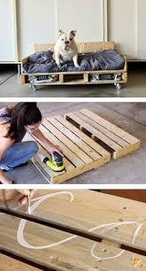 home depot black friday pet beds gus u0027s new bed englishmastiff dog training tips pinterest