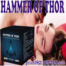 agen pusat toko obat hammerof thor asli di kalimantan utara pusat
