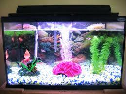 aquarium decoration ideas freshwater realistic fish tank decoration ideas decoration fish tank design