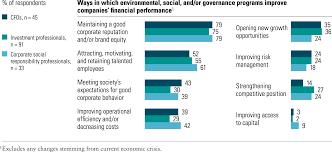 valuing corporate social responsibility mckinsey global survey