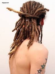 stages of dreadlocks pictures shade of ashes 20 25 little unknown things about having dreadlocks