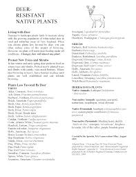 plants native to new england deer resistant native plants a handout from alicia geilen