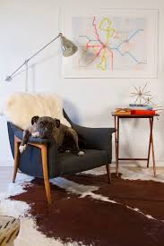 how to remove pet hair everywhere from furniture floors and more