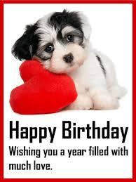 loving puppy birthday card cuteness alert a puppy on a pillow