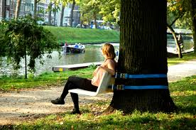 aandeboom s portable tree bench turns any tree into a shady seat