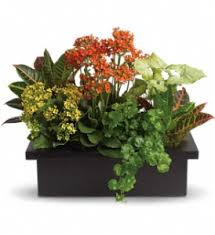 wedding flowers mississauga flower shop mississauga flower delivery funeral flowers