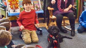 How Do Blind Dogs Know Where To Go Service Dogs Help People With More Than Blindness
