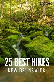 25 best moss for century brunswick s 25 best hiking trails explore magazine