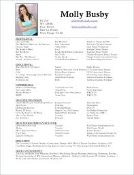 scannable resume template what is a scannable resume publicassets us