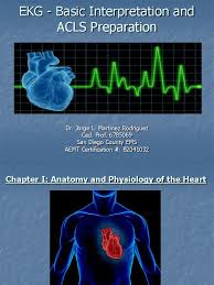 acls full lecture myocardial infarction electrocardiography