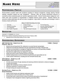 Sample Resume Entry Level by Resume Sample For Accountant Entry Level Templates