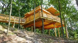 treehouses swenson say fagét