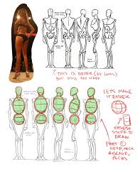 Cartoon Human Anatomy 109 Best Anatomy Proportion Ratio Images On Pinterest Drawings
