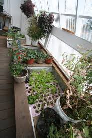 feelgood aquaponics commercial backyard aquaponic system wolf