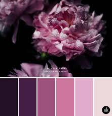 Pink Light Best 25 Peony Colors Ideas On Pinterest Peony Red Peonies And