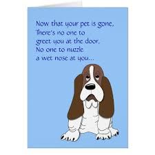 the loss of a pet sad basset hound dog sympathy loss of pet card zazzle