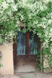 69 best vines u0026 espalier images on pinterest garden ideas