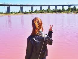 pink lake in australia popsugar smart living uk