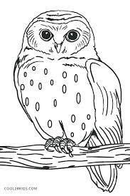 coloring page for adults owl abstract owl coloring pages best abstract coloring pages images on
