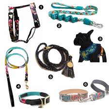 dog milk modern dog collar leash and harness products