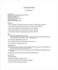 executive curriculum vitae 9 functional curriculum vitae samples free u0026 premium templates
