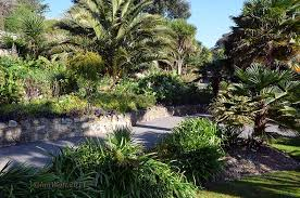 Ventnor Botanic Gardens Ventnor Botanic Garden Botanical Garden Photography