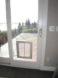 sliding glass door measurements sliding glass doors with dog door built in home design