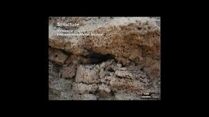 webinar the basics of designing for desert and arid soils youtube