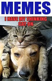 Hilarious Dog Memes - memes super funny memes full of hilarious dog memes memes xl