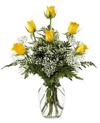 home royer u0027s flowers and gifts flowers plants and gifts with