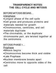Mitosis And The Cell Cycle Worksheet Cell Division The Cell Cycle Mitosis And Cytokinesis Complete Unit