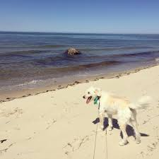 5 best places near brewster by the sea to enjoy nature