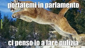 Puma Meme - puma meme by lukeio01 memedroid