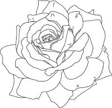 awesome rose picture coloring download u0026 print
