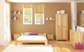 interior home colors for 2015 home interior colors purchaseorder us