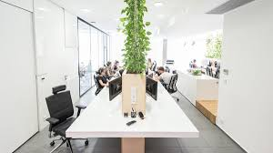 plants for office modern office interior with indoor plants house design and decor