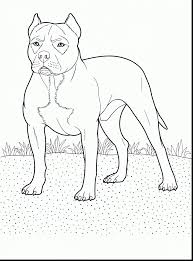 impressive pitbull window decals with pitbull coloring pages