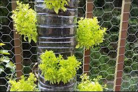 Diy Backyard Design On A Budget 17 Awesome Ideas For Diy Backyard Landscaping On A Budget