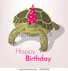 happy birthday greeting card tortoise colorful stock vector