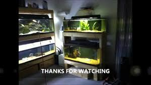 building a fish tank rack starting a fish room part 2 youtube