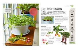 10 Vegetables U0026 Herbs You by Healthy Vegetables And Herbs To Grow Indoors The Self Indoor