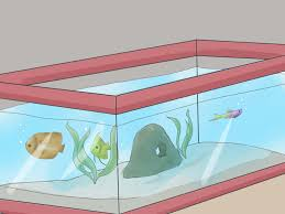 the best way to set up a tropical freshwater aquarium wikihow