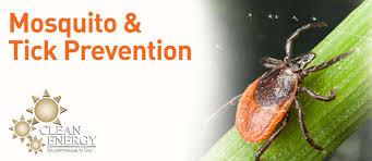 mosquitoes u0026 ticks in pennsylvania