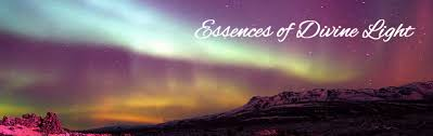Divine Light Essences Of Divine Light Shanta Gabriel