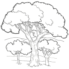 coloring extraordinary tree coloring sheet pages hills