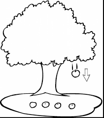 fabulous apple tree coloring page kokap with apple tree coloring