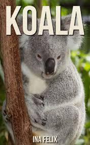 buy koala children book of fun facts u0026 amazing photos on animals