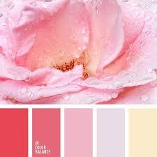 Pink Color Scheme 256 Best In Color Balance Palette Images On Pinterest Colors