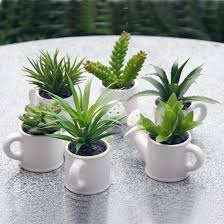 indoor plant 33 creative ways to include indoor plants in your home