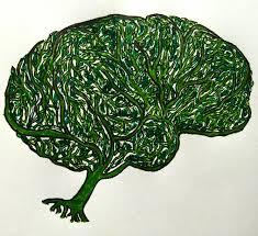 sketch of a green brain u2013 the quantum thought